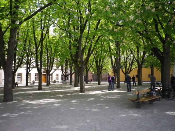 Joueurs de pétanque, Munsterplatz